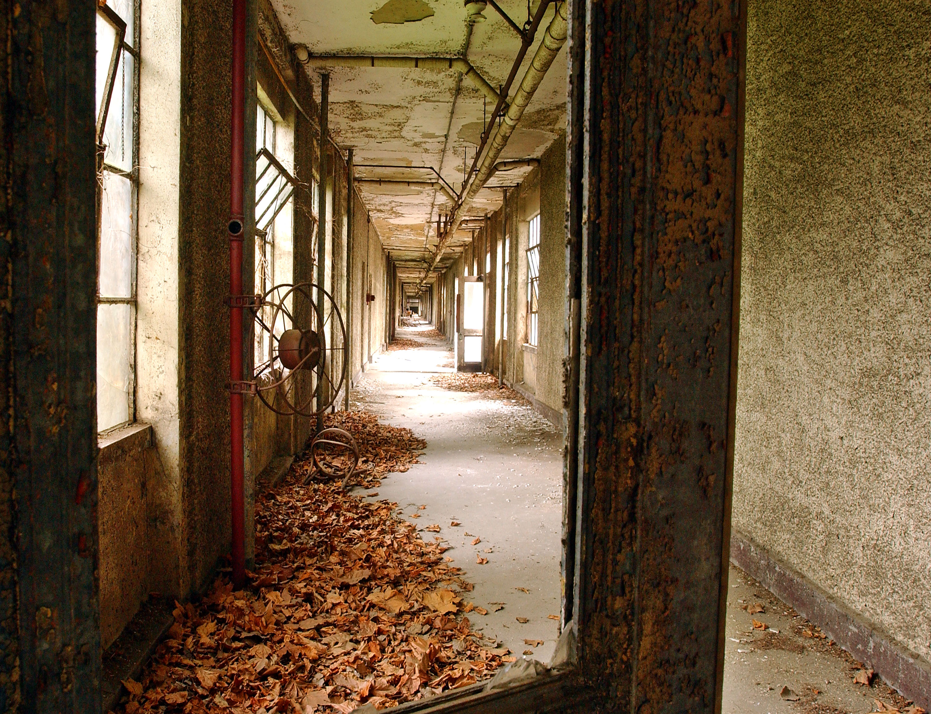 halloween nyc scary places ellis island hospital complex