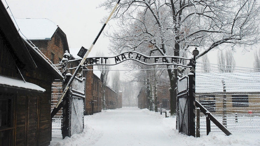 auschwitz exhibit museum of jewish heritage nyc holocaust