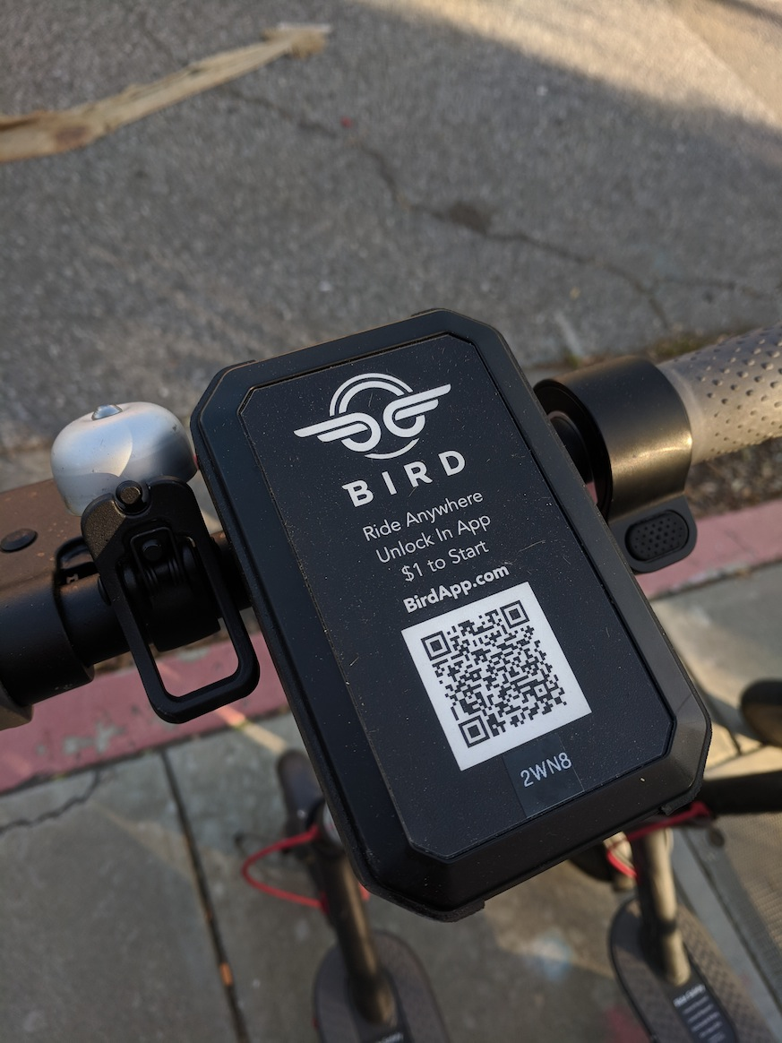 bird scooters | bird scooters cambridge