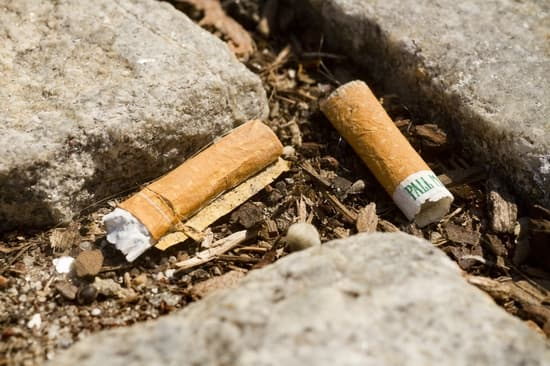 the dangers of cigarette butts