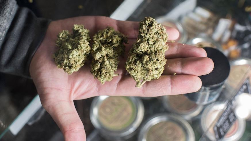 recreational marijuana | recreational marijuana sales massachusetts