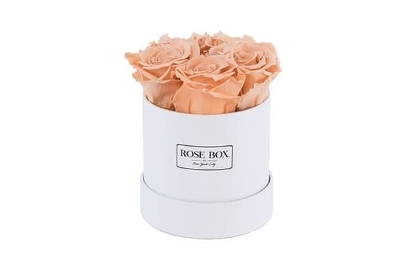 Rose Box Mini White Box With Peach Roses