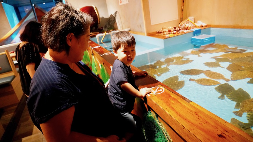 zauo nyc japanese fishing restaurant things to do in nyc