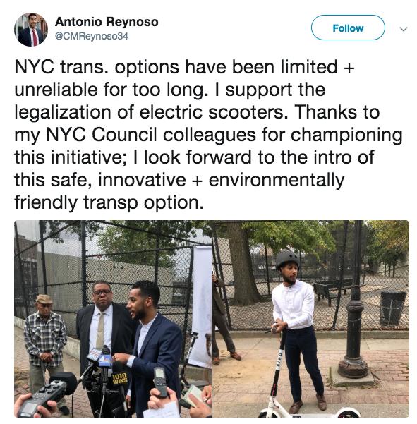 electric scooters | bird nyc | transalt